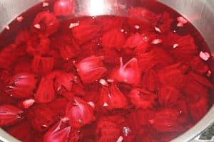 Sorrel flowers soaking to make a delicious Christmas time treat.