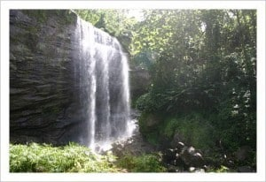 Beautiful Mt Carmel Waterfall is a magical place for romantic photos.