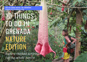 things to do grenada nature